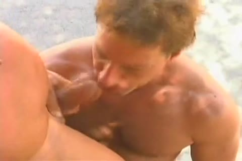 Tom Katt And one greater amount Muscle boy