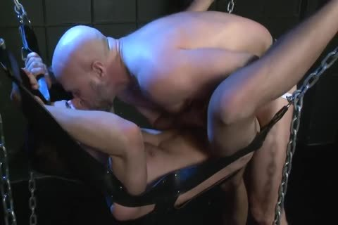 raw Bears And stripped boyz Scene 3