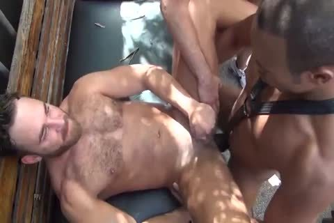 three-three 14 Logan Moore bareback gang plowed