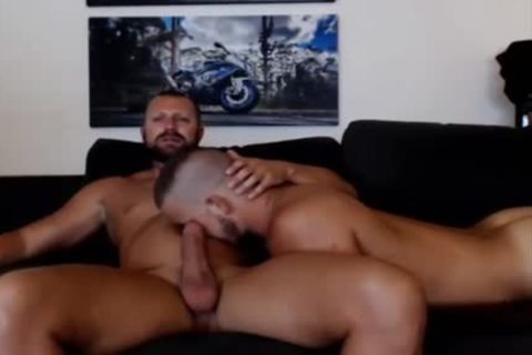 young Bear Sucks A older Bears shlong Live On Cruisingcams Com