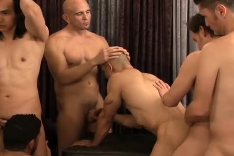 A group Of gay allies All pounding together