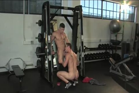 Musclebound Trenton Ducati Ryan Rose, angel Rock
