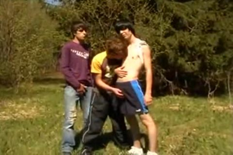 3some twinks On First Time Barebacking Outdoor