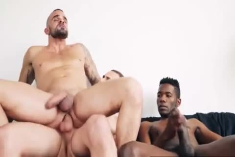 raw biggest dicks Compilation