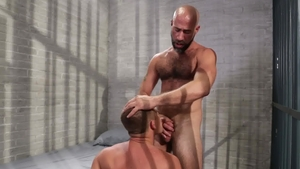 IconMale.com: Hairy young twink Brandon Wilde blowjob in HD
