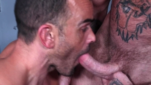 Men Over 30: Caucasian Damien Crosse rough rimming